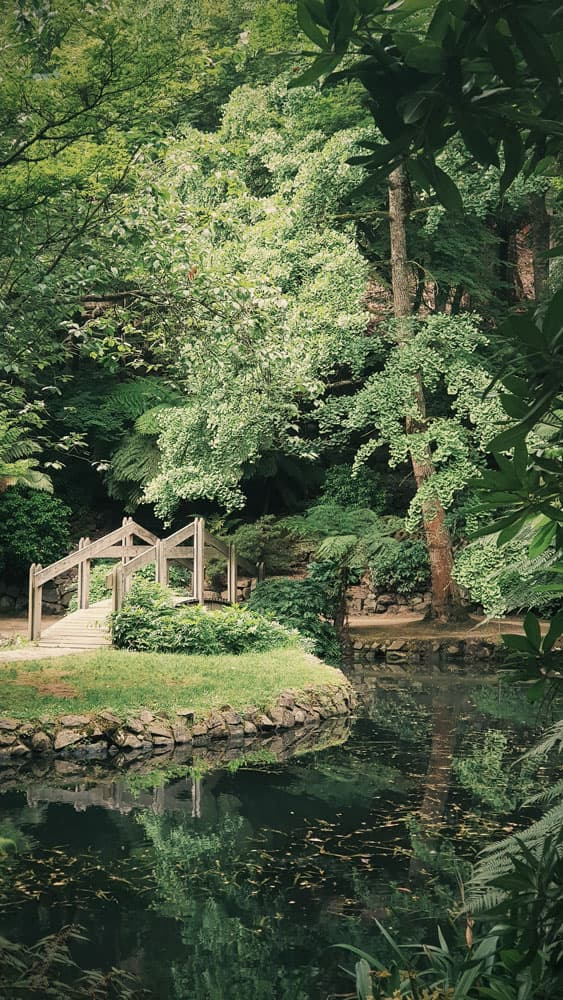 Garten mit Brücke